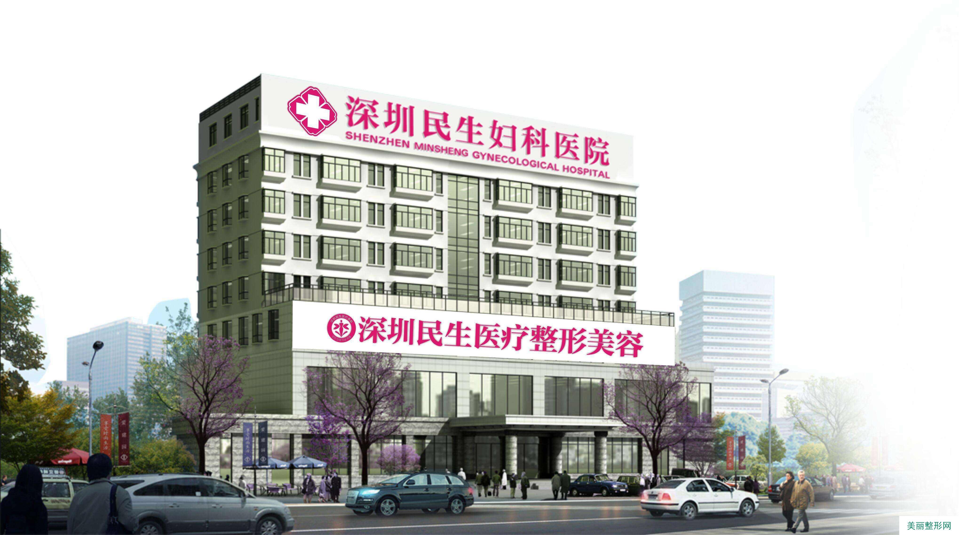 深圳民生医疗美容整形医院 金猪全新价格表