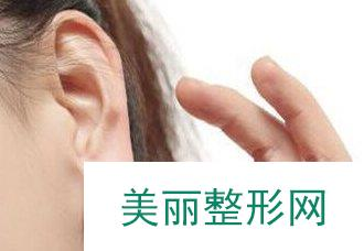 丰耳垂多少钱 丰耳垂的价格贵不贵